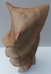 Driftwood Twist, Figure 4