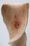 Driftwood Twist, Figure 5