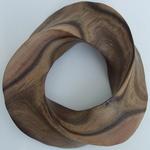 Black Mesquite Torus Knot, Figure 1