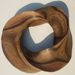 Black Mesquite Torus Knot, Figure 3 by Alex J. Feingold