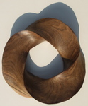 Black Mesquite Torus Knot, Figure 4 by Alex J. Feingold
