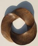 Black Mesquite Torus Knot, Figure 4