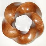 Kauri (4,5) Torus Knot, Figure 2