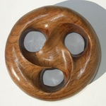 Amazakoue Wood Genus 3 Triple Link, Figure 1 by Alex J. Feingold