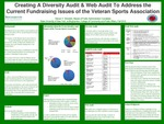 Creating a Diversity Audit & Web Audit to Address the Current Fundraising Issues of the Veteran Sports Association by Steven Shirokikh